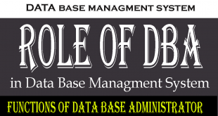 How does DBA work in DBMS?