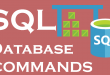 How do SQL Commands work in DBMS?